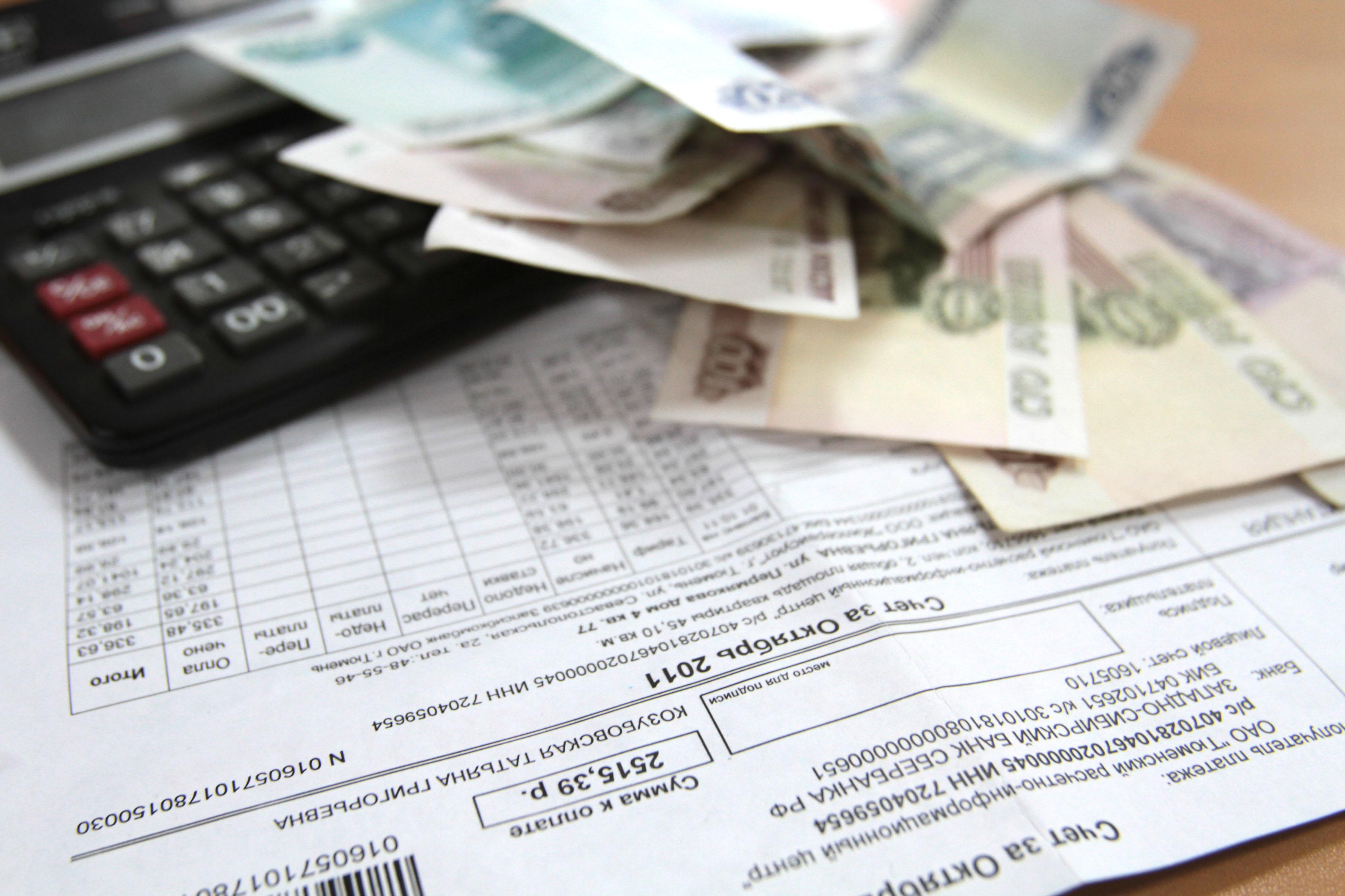Власти планируют ужесточить контроль за должниками по услугам ЖКХ