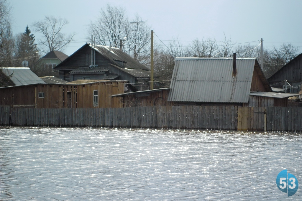 Эксперты определили сумму компенсации ущерба от плохой погоды новгородским фермерам