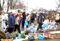 Агропромышленная ярмарка «Урожай – 2013» пройдет в Великом Новгороде