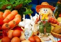 26 сельскохозяйственных рынков работает в Новгородской области