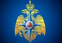 В Рождественскую ночь новгородские сотрудники МЧС спасли трех человек