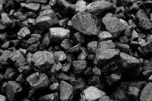 По факту кражи угля, принадлежащего ООО «ТК Новгородская», вынесен обвинительный приговор