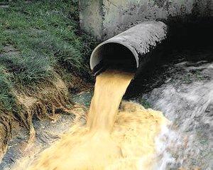 В отношении мэрии Великого Новгорода возбуждено дело из-за попадания неочищенных сточных вод в Волхов