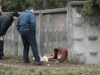 Фото: в Великом Новгороде обезвредили чемодан