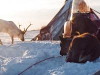 О чём рассказывают «Градусы открытий» в фильме про экспедицию в Заполярье