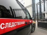В Новгородской области проводится проверка по факту смерти годовалого ребенка