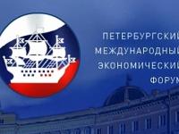 Сергей Митин проведет ряд важных встреч в рамках Петербургского Международного Экономического Форума