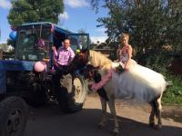 В Сольцах молодожёны подъехали к ЗАГСу на тракторе и лошади