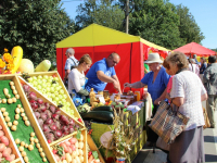 10 сентября в Новгородской области пройдет несколько ярмарок