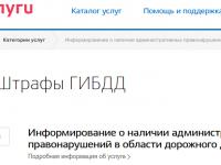 ГИБДД и МФЦ объяснят новгородцам как пользоваться Госуслугами