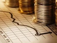 На заседании думы Новгородского района обсудили проект бюджета на 2017 год