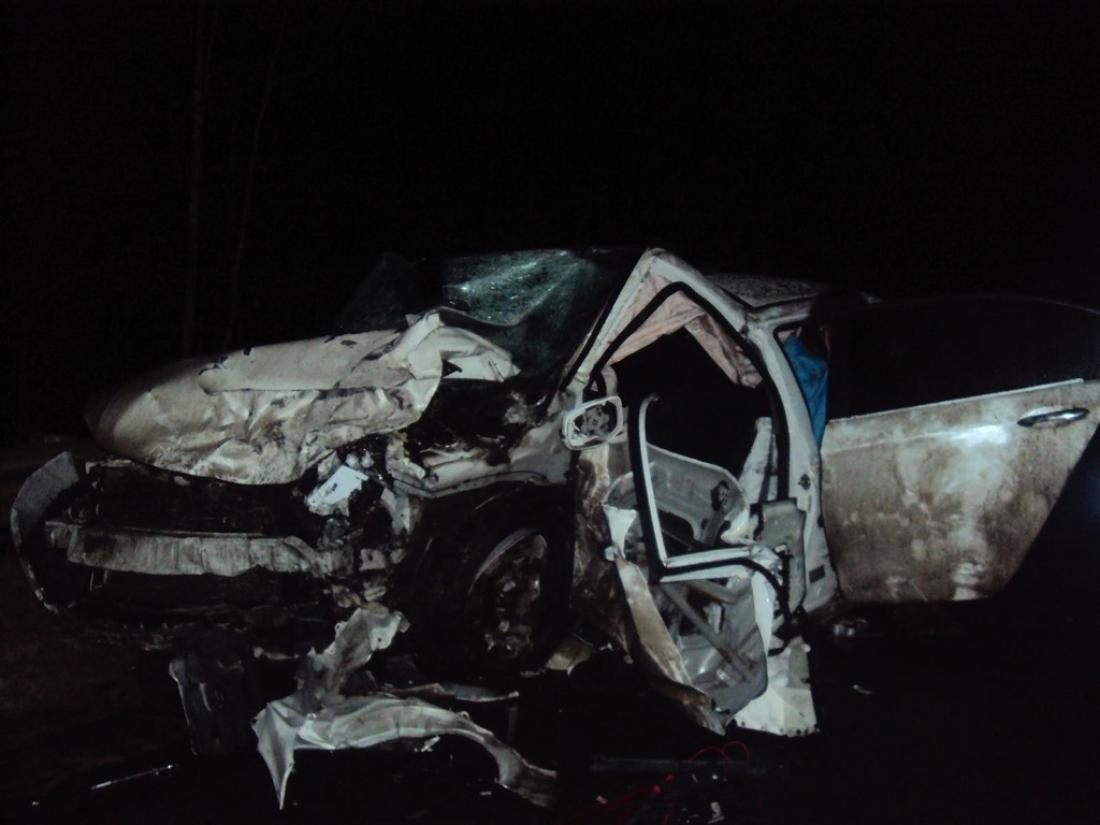 Из-за смертельного ДТП в Чудовском районе водитель получил срок