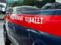 В Великом Новгороде девочка погибла от удара током