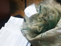 Язь, сопа и рыболовные сети конфискованы для уничтожения новгородскими приставами