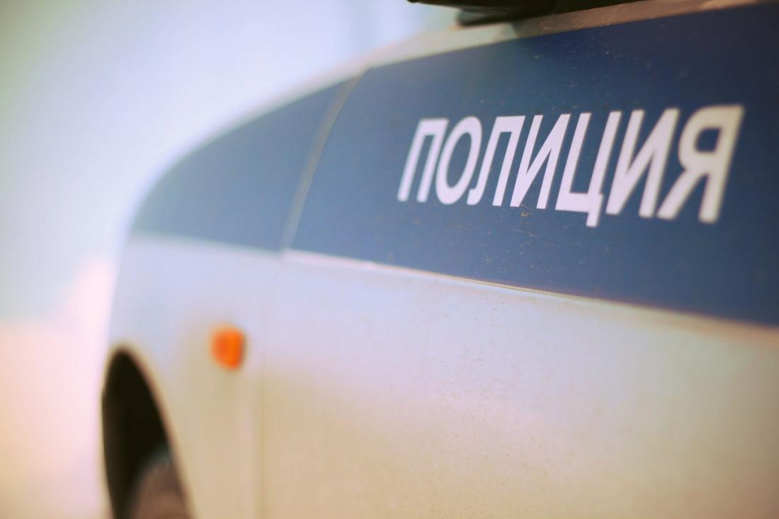 Демянские подростки похитили почти семь метров дорожного ограждения
