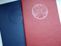 Новгородка хотела устроиться в полицию с подложным дипломом