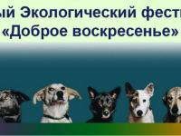В Великом Новгороде пройдет первый экологический фестиваль «Доброе воскресенье»