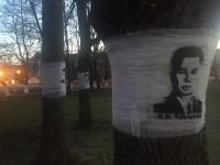 «Аллею героев» в Великом Новгороде создали участники акции «Дерево жизни»