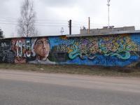 Студент из Санкт-Петербурга подарил боровичанам граффити на военную тематику