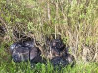 В Великом Новгороде дачники «Дружбы-2» не могут нормально дышать из-за «трупного запаха» от появившейся свалки