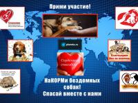Благотворительный проект новгородского Фонда «Спасение» приближается к «несгораемой» сумме
