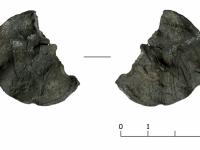 Каждый день работы археологов в Старой Руссе приносит выдающиеся находки