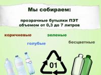 Новгородская школа присоединилась к новому городскому экологическому проекту