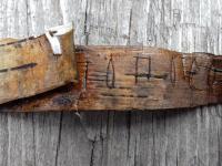 Новгородские археологи пытаются расшифровать слова на первой берестяной грамоте 2017 года
