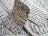 Новгородского школьника оштрафовали за незнание иностранного языка