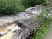 Одной из причин затопления села Комарово стал карповник, для создания которого местные закрыли шлюзы ГТС