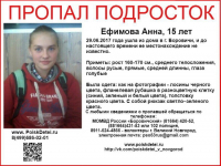 Пропавшая в Боровичах девушка-подросток выходит на связь с родителями, но не хочет возвращаться домой