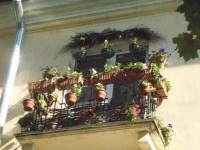 Пять самых цветущих новгородских балконов претендуют на победу в городском конкурсе