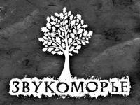 У «Звукоморья» парк кремлевский: осенью новгородцы увидят премьеру нового музыкального фестиваля