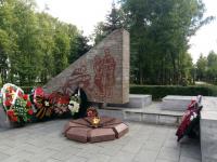 Новгородские активисты ОНФ проверили «Вечный огонь»