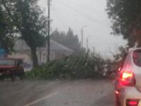 Фото: Боровичи и Валдай под натиском плохой погоды
