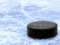 На открытие Кубка губернатора Новгородской области по хоккею приехали братья-чемпионы Буцаевы