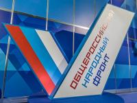 Новгородские активисты добились ликвидации двух крупных свалок в Солецком районе