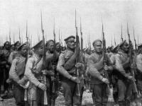 Новгородцы могут найти информацию о своих прадедах – участниках Первой мировой войны
