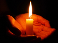 «Сад памяти» жертв авиакатастрофы над Синаем зацветет этой осенью