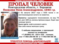 В Боровичах идут поиски пропавшей 77-летней женщины