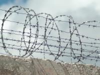 В новгородских колониях нарушали закон при оформлении документов на УДО