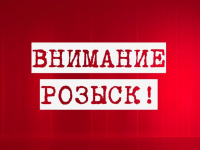 В Новгородской области пропала 9-летняя девочка