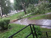 В Новгородской области снова объявлено штормовое предупреждение
