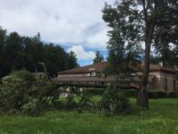 В областном Центре защиты леса предупреждают о возможных угрозах для жизни