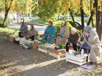 Валдайские бабушки просят дать им место напротив «Пьяной площади»