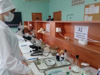 Второй раз объявлен конкурс на должность председателя комитета ветеринарии Новгородской области