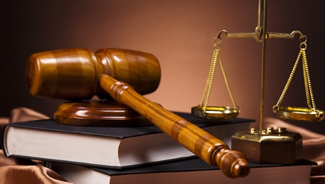 В Новгородской области завершились выплаты огромных штрафов по резонансному делу