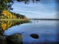 На Валдайском озере предотвращена экологическая катастрофа