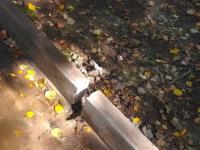 Фотофакт: новым поребрикам в Старой Руссе памятников, как в Питере, не поставят