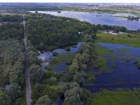 Новгородка призывает создать пешеходную дорожку от Юрьева монастыря до Витославлиц